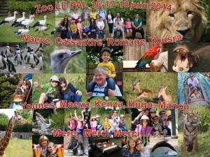 Zoo_LE_PAL_16-17-18_juin_2014